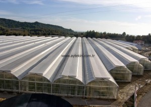 best greenhouse companies