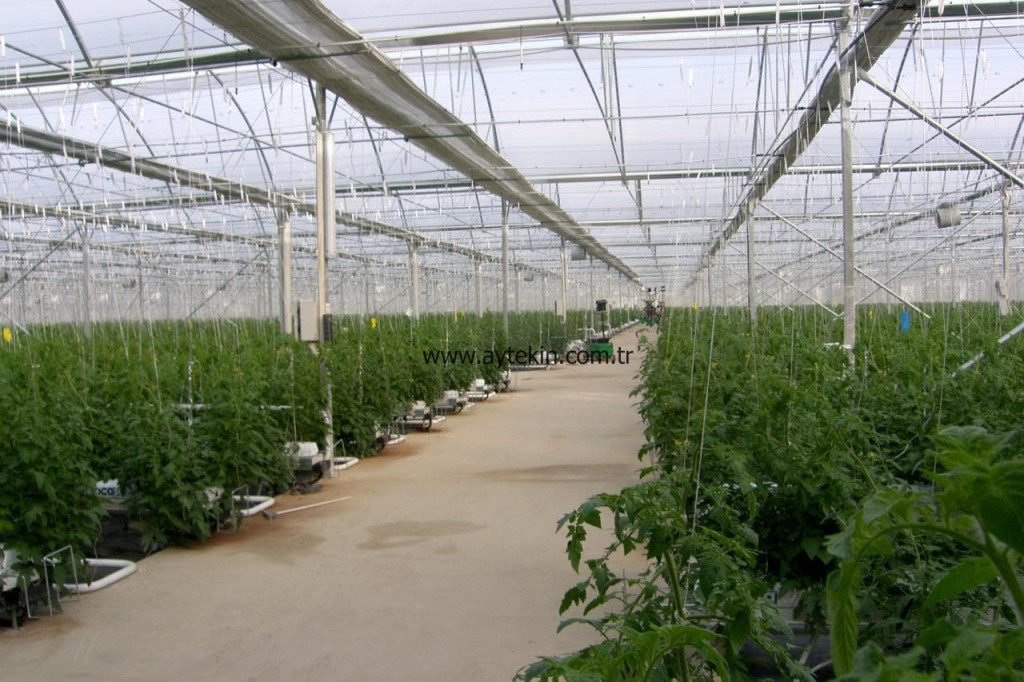 best turkish greenhouse company