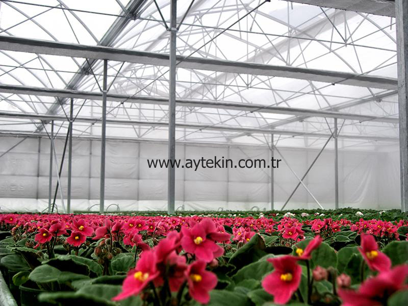 Flower Greenhouse Yalova Turkey