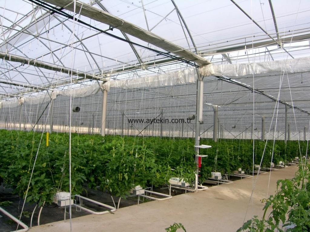 good greenhouse companies