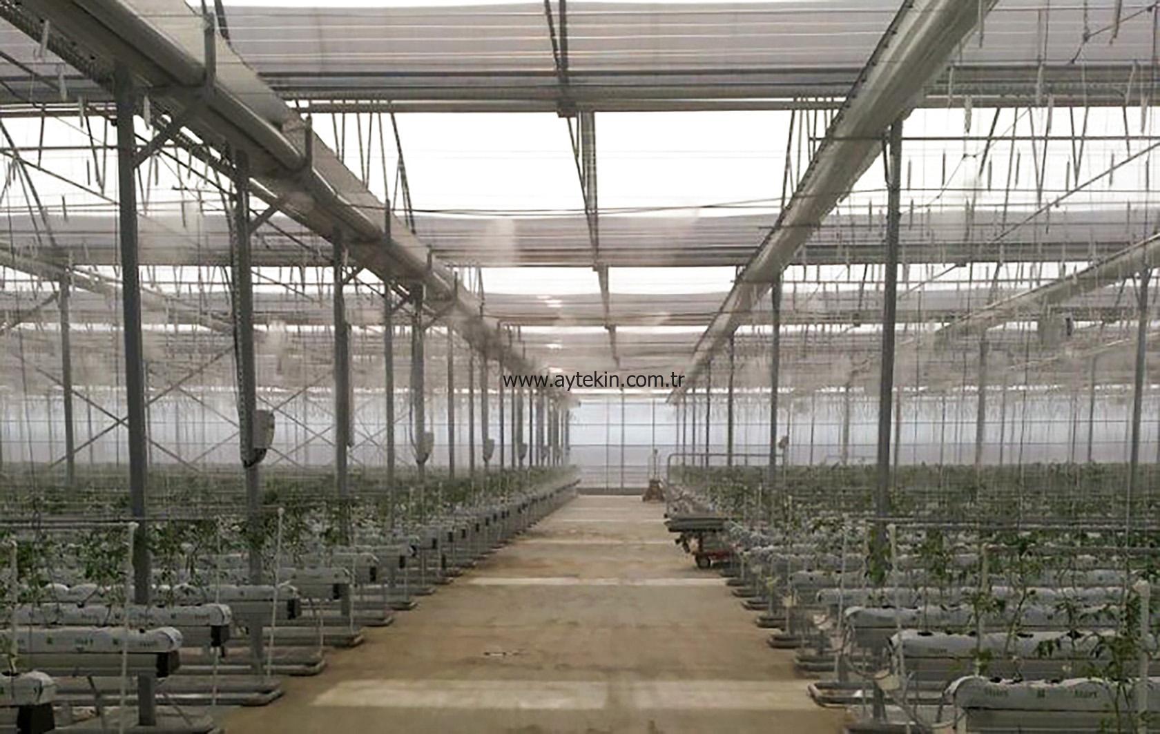 greenhouse company azerbaijan