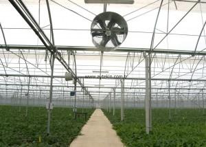 greenhouse constructors