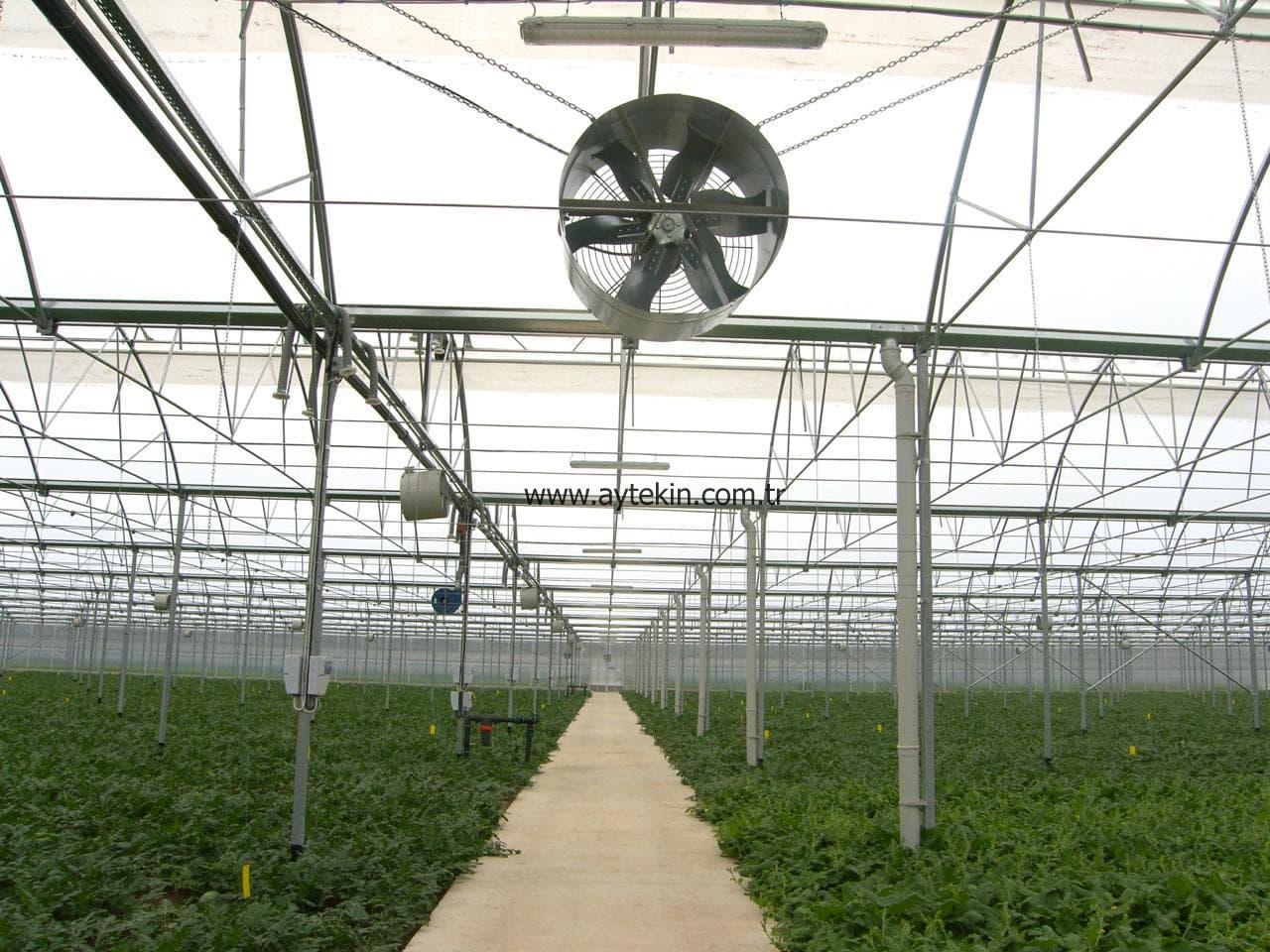 Seedling Greenhouse Antalya Turkey