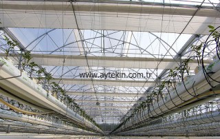 greenhouse construction companies