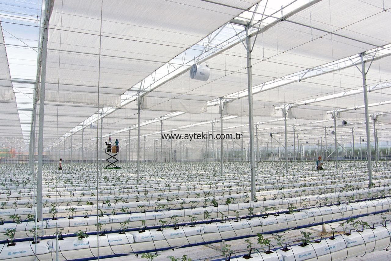 hidroponic greenhouse