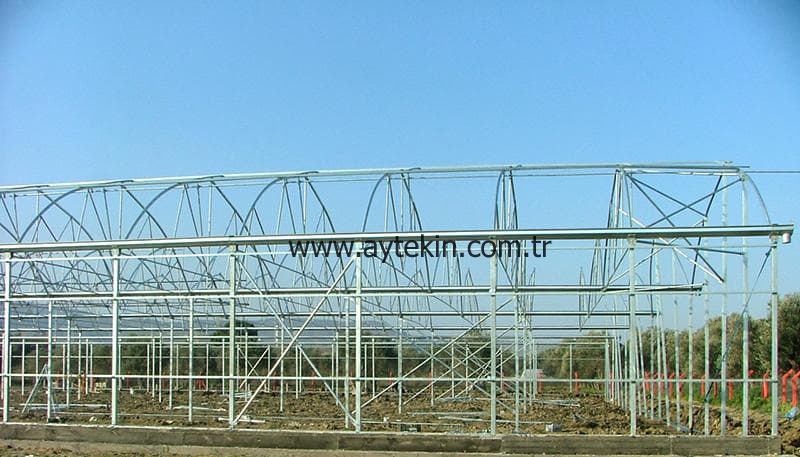 Soil Based Greenhouse İzmir Turkey