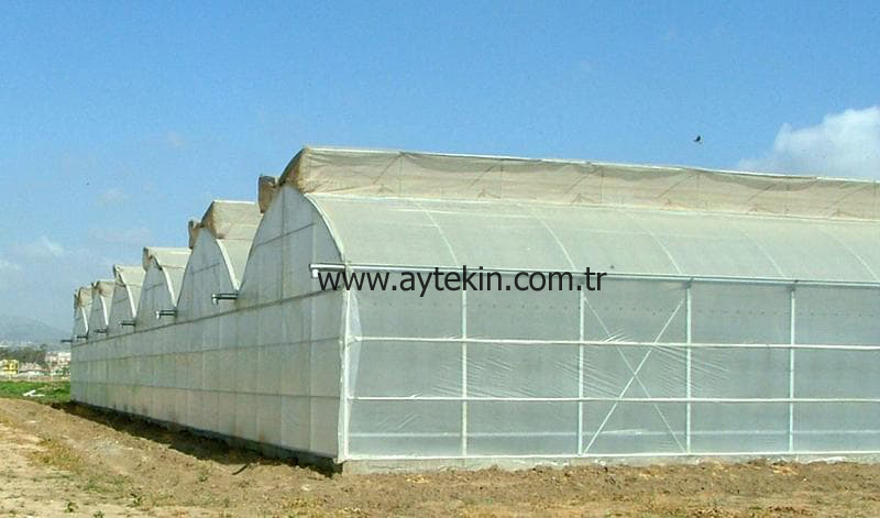 Soil Based Greenhouse Adana Turkey