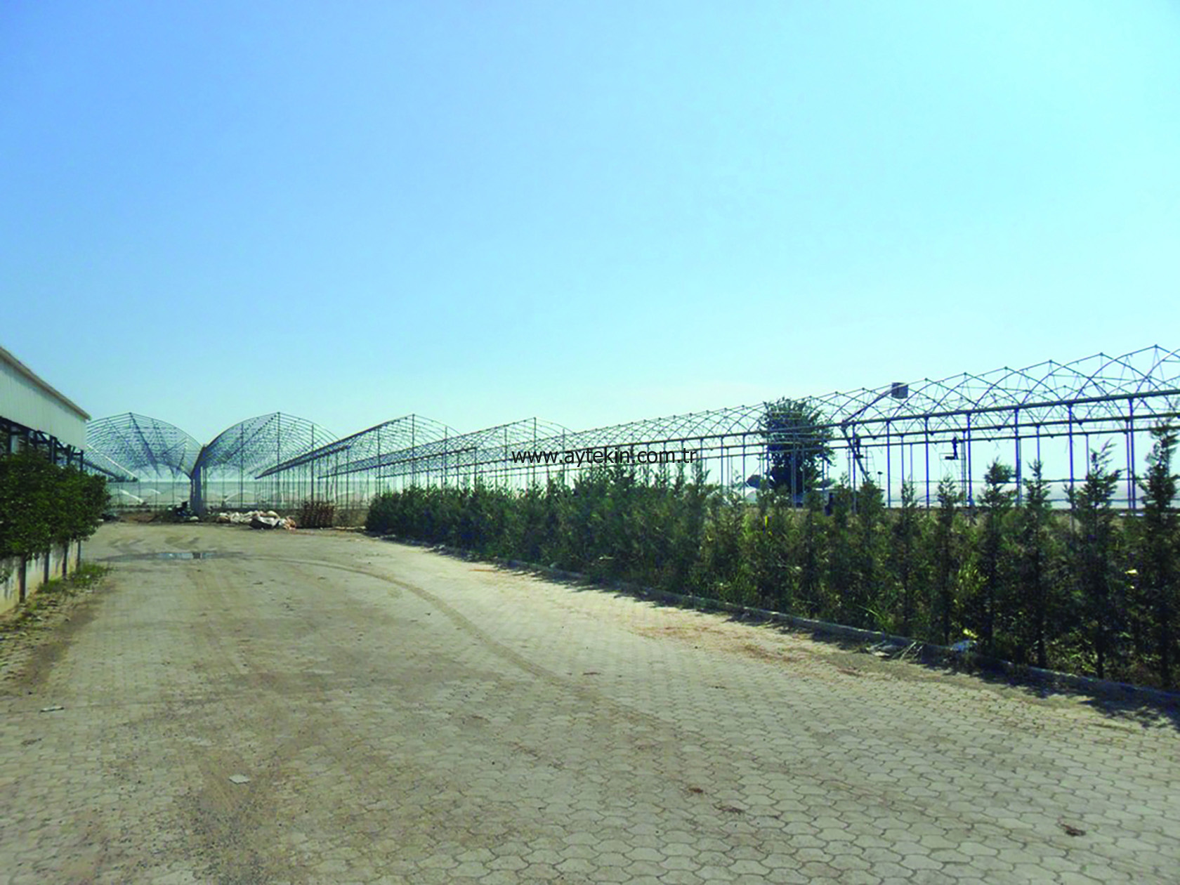 Soil Based Greenhouse Antalya Turkey