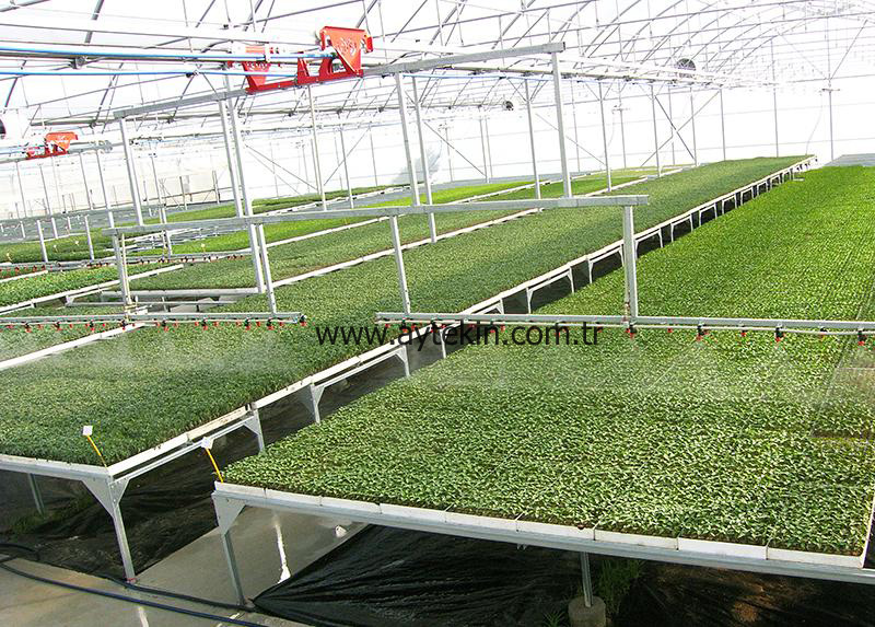 Seedling Greenhouse Mersin Turkey