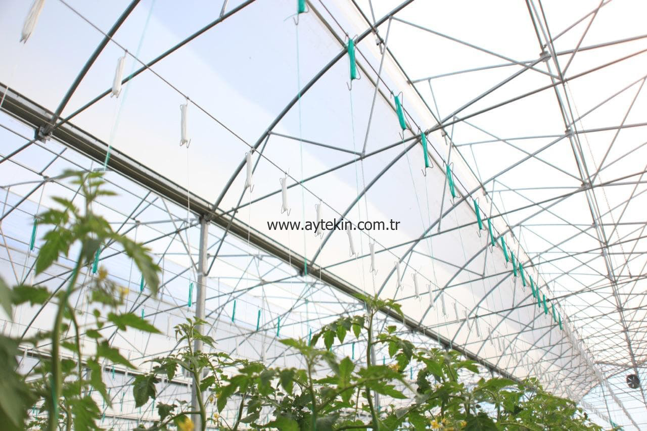 Seedling Greenhouse Antalya Turkey